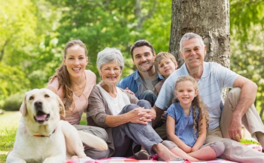 Запорожцев зовут отметить День семьи