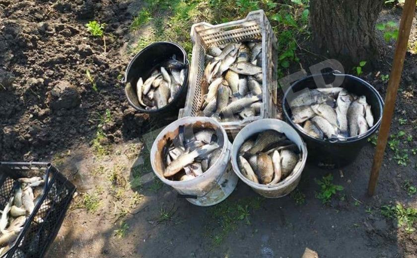 У запорожского браконьера нашли 270 кг карасей