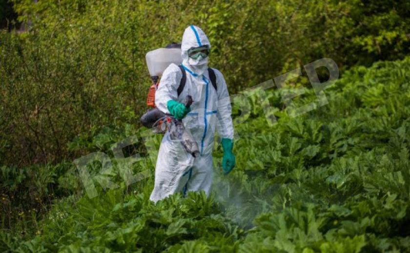 Запорожская власть пыталась накупить «левых» химикатов на миллион